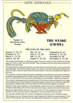 Zodiac Unlimited Aztec astrology postcard: The Snake Zodiac Unlimited Aztec astrology postcard: The Snake Astrology And Horoscopes, Astrology Numerology, Astrology Zodiac, Zodiac Signs, Mayan Astrology, Chinese Astrology, Egyptian Mythology, Egyptian Symbols, Snake Zodiac