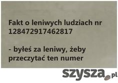 Śmieszne zdjęcia - Szysza.pl