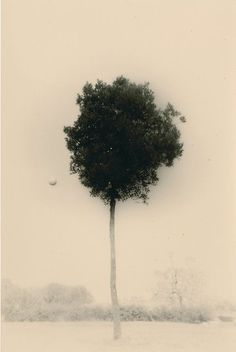 Masao Yamamoto, '1612, from Kawa = Flow, n.d.,' , Lisa Sette Gallery