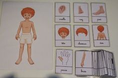 Crapouillotage: Cartes de Nomenclatures : CORPS HUMAIN Montessori Education, Montessori Materials, Kindergarten, Learning English For Kids, Body Systems, Learning Environments, Home Schooling, Learn French, Activities For Kids