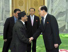 최고인민회의 상임위원회 위원장 김영남동지가 여러 나라 당대표단을 만났다