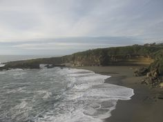Te Nikau, New Zealand