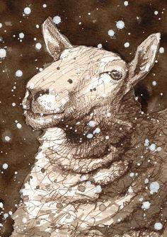 Prunella  Sheep