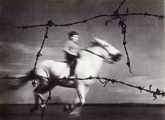 Para los amantes de la fotografía, fotos de Pedro Raota. - Taringa!
