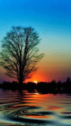 Breathtaking Sunset Photography