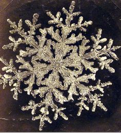 Snowflakes, natural wonder ~ Photograph of a snowflake by Wilson Alwyn Bentley (ca. Bentley is a great winter book :) Snowflake Bentley, Foto Macro, Snowflake Photos, Real Snowflakes, Snow Pictures, Snow And Ice, No Photoshop, Winter Beauty, Winter Scenes