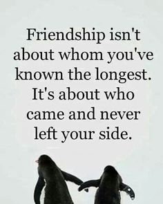 Looking for for lessons learned quotes?Check out the post right here for unique lessons learned quotes ideas. These amuzing images will make you enjoy. Bff Quotes, Best Friend Quotes, Great Quotes, Quotes To Live By, Funny Quotes, Inspirational Quotes, People Quotes, Nice Quotes For Friends, To My Best Friend