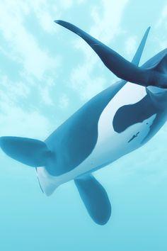 Depth Game screenshot #digitalconfectioners #virtualphotography #societyofvirtualphotographers #ingamephotography #videogamephotography #vgphotography #orca #underwater Keiko Orca, Ocean Photography, Killer Whales, Nature Wallpaper, Marine Life, Underwater, Community, Game, Animals