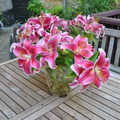 flower blooming - hybridablog