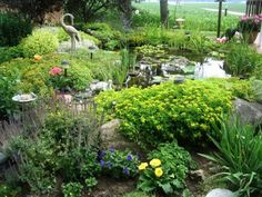 Empress of Dirt's advice for starting a new garden pond.  http://www.empressofdirt.net/advice-for-starting-a-new-garden-pond/#
