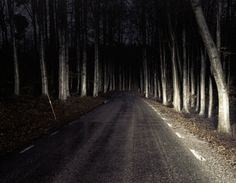 creepy highway in the woods at night Into The Woods, Between Two Worlds, Night In The Wood, Southern Gothic, Dark Fantasy, Stranger Things, Supernatural, Scenery, Instagram