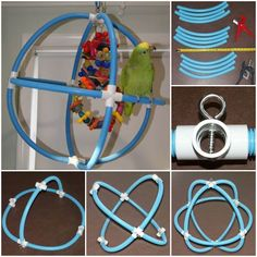 A+Bird's+Best+Life+– DIY+Spherical+Swing+for+Parrots+>>>+Free+Crafts+Project… – Anima Care Diy Parrot Toys, Diy Bird Toys, Parrot Pet, Bird Crafts, Diy Toys, Parrot Stand, Bird Stand, Bird Aviary, Bird Perch