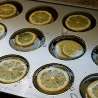 no waste lemon and lime ice cubes
