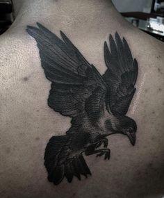 Nyc Tattoo Artists, Norse Legend, Raven, Wisdom, Symbols, Tattoos, Instagram Posts, Crows, Tatuajes