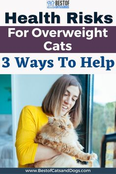 Health Risks For Overweight Cats. If You Suspect Your Cat Is More Fat Than Fit, Consider Scheduling An Appointment With Your Cat's Veterinarian For A Complete Checkup To Rule Out A More Serious Cat Health Issue Like An Infection, Metabolic Disease, Heart Disease, Or... Read More Here! #CatObesity #OverweightCats #CatHealthRisk #ObeseCats
