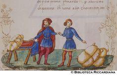 Ricc. 2669, FILIPPO CALANDRI, Trattato di aritmetica Sec. XV, fine; Firenze.