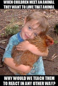 Teach your children to love animals . Most children would not eat meat if they really saw what happened to those animals. GO VEGAN if you really are an animal lover and stop the hypocrisy of the sanitised meat industry. Vegan Facts, Vegan Memes, Vegan Quotes, Vegetarian Memes, Racing Extinction, Why Vegan, Stop Animal Cruelty, Vegan Animals, Save Animals
