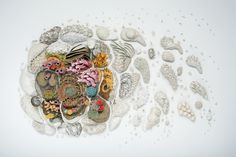 Our Changing Seas: A Ceramic Coral Reef by Courtney Mattison sculpture ocean environment coral climate change ceramics Environmental Sculpture, Environmental Science, Colossal Art, Art Moderne, Science Art, Western Art, Art Plastique, Contemporary Artists, Contemporary Design
