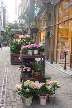 Flower shop,Váci utca, Budapest,Hungary