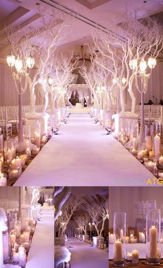 Winter theme wedding - white branches walkway