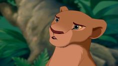 Who is Nala's father? Mufasa and Scar were the only adult males in the pride. If either was her father, the fact would have to be mentioned at some point, since the three share a large portion of the plot. Yet we have no indication that either of them is her father.