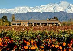 Bodega Vistalba  - Carlos Pulenta Wines. (Mendoza, Argentina).