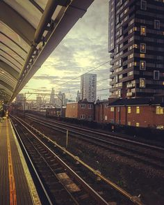 credit: @lucianoramosl #shadwell #loveshadwell