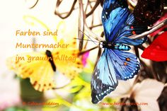 Farben sind Lichtblicke im grauen Alltag http://www.farben-reich.com/