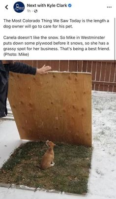Cute Funny Animals, Funny Cute, Cute Dogs, Cute Babies, Animals And Pets, Baby Animals, Dog Memes, Funny Memes, Good Vibes Only