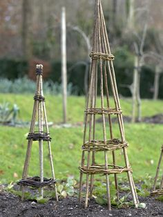 Willow Wigwam Garden Support    Give a wigwam support that you've built at Christmastime to your favorite gardener. By the time summer comes, they can be covered in beautiful climbers.