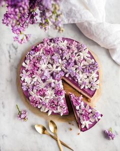 Blueberry Dream Cake - Raw cake by Vanelja