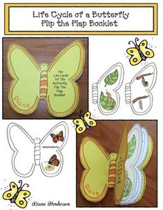 The Life Cycle of a Butterfly Flip the Flap Booklet cycle of a butterfly crafts Butterfly Activities: Life Cycle of a Butterfly Booklet Craft Teaching Science, Science Activities, Activities For Kids, Sequencing Activities, Butterfly Project, Butterfly Crafts, Karton Design, The Very Hungry Caterpillar Activities, Concepts Of Print