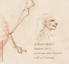 Image result for bestiary book teen wolf