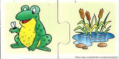 лягушка - болото (700x348, 209Kb)