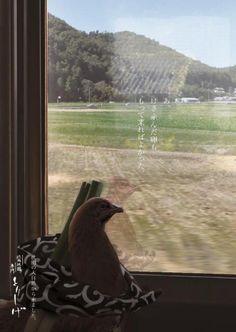 【悲報】鳥、とんでもない広告に利用される | 2ちゃんねるスレッドまとめブログ - アルファルファモザイク