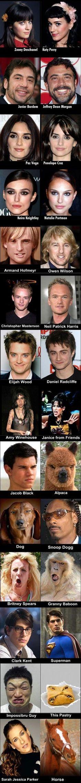 Celebrity look alikes.. I dieddd