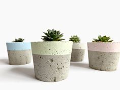 These #pastel mini #concrete #pots are so cute! They would look great lined up on a window ledge.