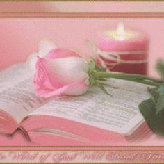 #cristianismo #cristo #dios #espiritu #espiritualidad #jesus #religion #sacia #sacia mi ser senor jesus #senor #ser