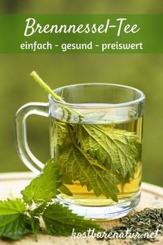 - Warum du öfter Brennnesseltee trinken solltest The nettle is one of the strongest domestic medicinal plants. With a simple tea with nettle leaves can ease many ailments. Calendula Benefits, Lemon Benefits, Coconut Health Benefits, Nettle Leaf Benefits, Herbal Remedies, Natural Remedies, Nettle Leaf Tea, Types Of Tea, Matcha Green Tea