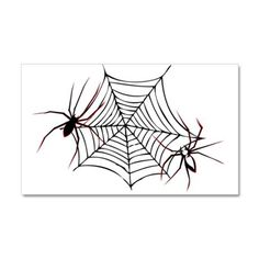spider web 38.5 x 24.5 Wall Peel