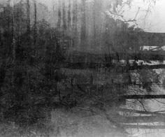 Oxshott Abstract by Glenn Wakeford