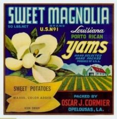 Sweet Magnolia, flower, Antique Original Vintage Sweet Potato & yam Box Label