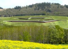 Italy's Green-Roofed Antinori Winery is Topped With a Vineyard!