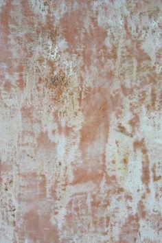 ORNAMENTUM STUDIO OF DECORATIVE ARTS - WALLS/CEILINGS