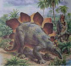 Stegosaurus - a wonderful classical interpretation of this dinosaur.