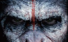 Dawn of the Planet of the Apes - Andy Serkis, Jason Clarke, Gary Oldman and Keri Russell Dawn Of The Planet, Planet Of The Apes, Mars Planet, Jason Clarke, Wallpaper Pc, Monkey Wallpaper, Tiger Wallpaper, Widescreen Wallpaper, Fantasy Films