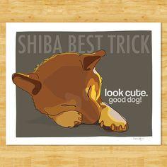 Shiba Inu, Dog Pop Art, Dog Art, Chibi Dog, Puppies And Kitties, Doggies, Puppy Pictures, Puppy Pics, Australian Shepherd Dogs