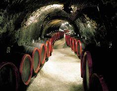 Tokaj cellar, Hungary