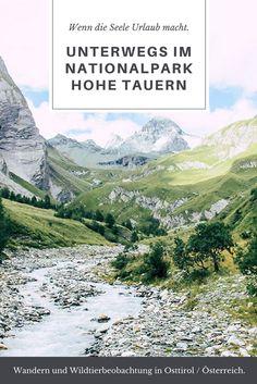 Folgt mir auf einige Wanderungen und Wildtierbeobachtungen im Nationalpark Hohe Tauern in Osttirol - einem Ort, wo Geist und Körper zur Ruhe kommen. (Wandern in Österreich) #NationalparkHoheTauern #HoheTauern #Osttirol #Österreich #Austria #Wandern
