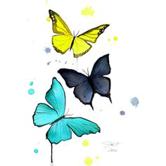 Print from original watercolor butterfly illustration by Jessica... ($25) ❤ liked on Polyvore